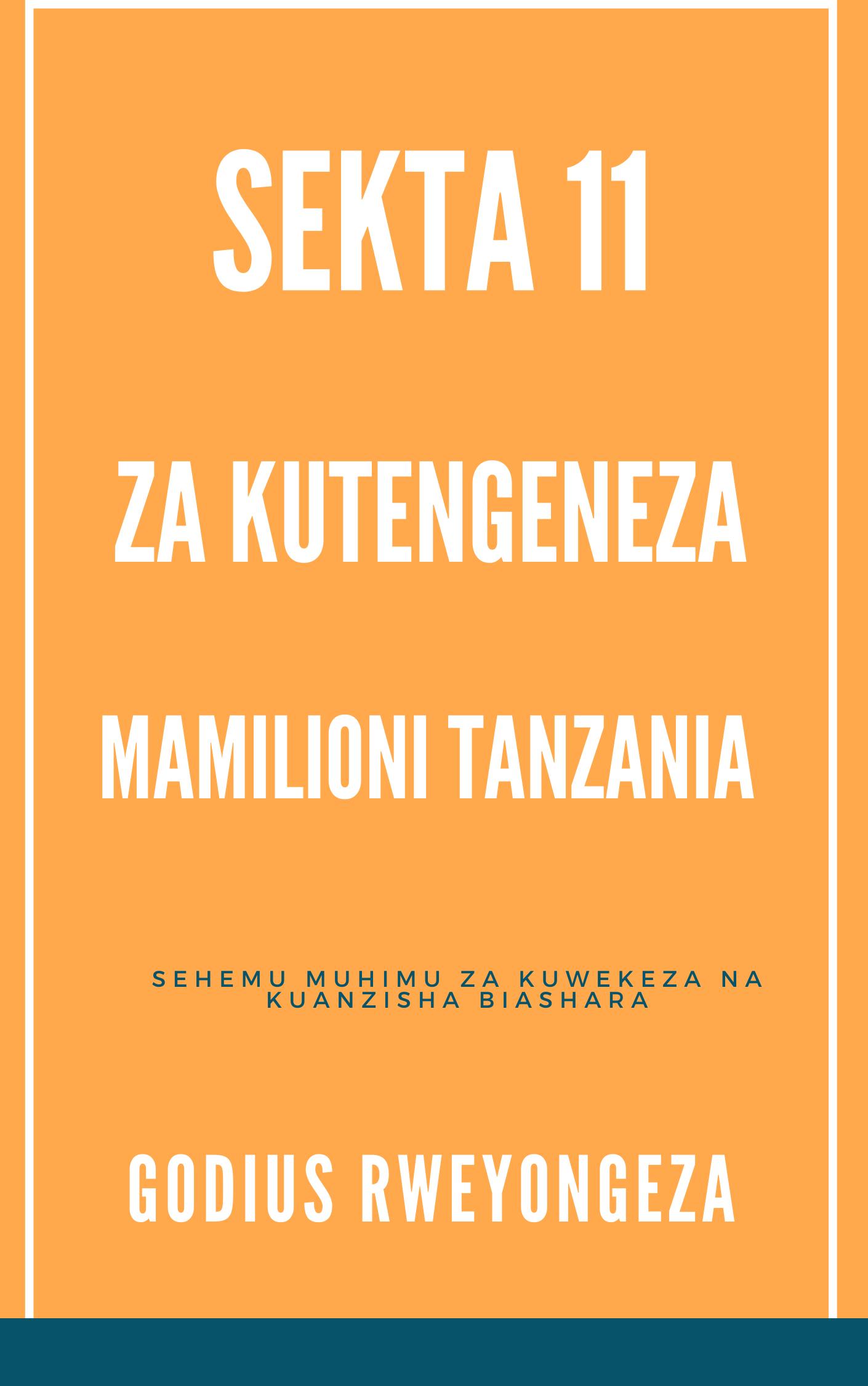 Sekta 11 Za Kutengeneza Mamilioni Ya Fedha Tanzania